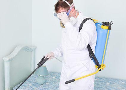 Pest control in singapore Advancepest