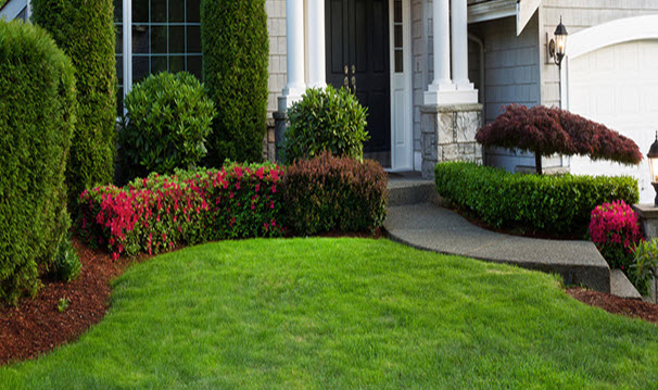 there-are-many-options-to-landscape-your-property.jpg