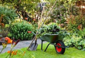 gardening services in Singapore